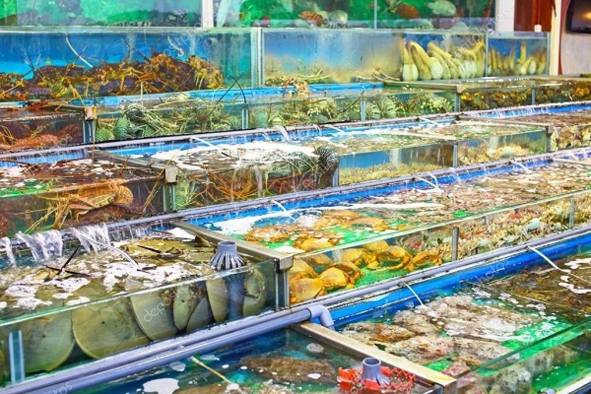 Sản phẩm thủy sản