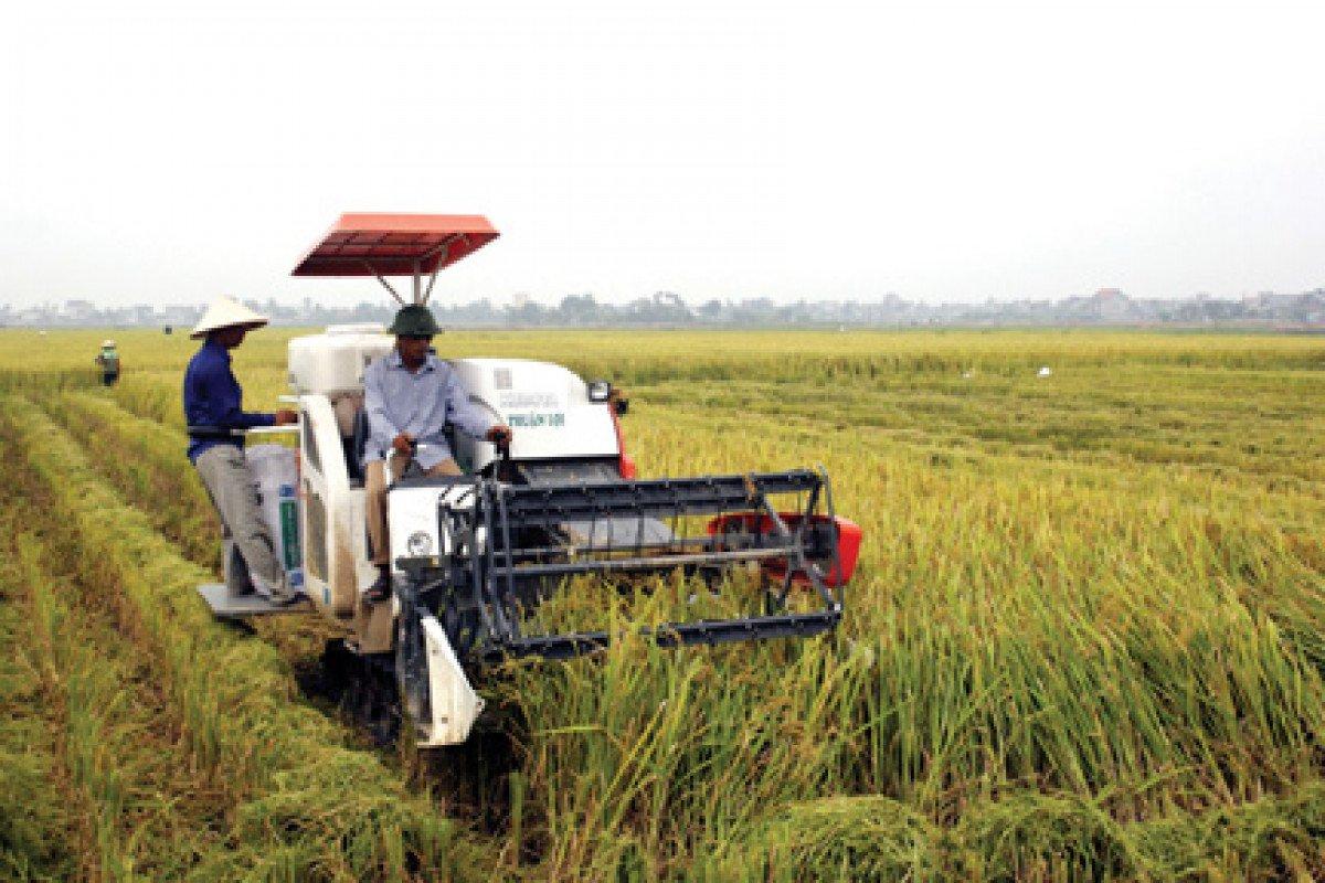 Máy móc thiết bị nông nghiệp