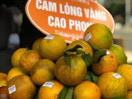 3T Cao Phong