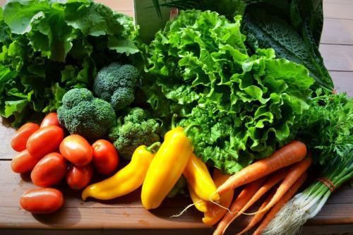 Cơ sở SX và KD rau củ quả CP Green farm