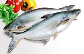 Công ty cổ phần thủy sản NTSF – Vùng nuôi Chợ Mới