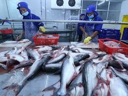 Công ty XNK thủy sản An Giang