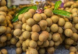 Nhãn Lam Sơn vietgap