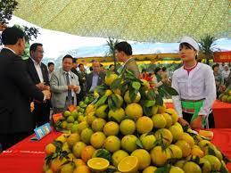 Tân Phong